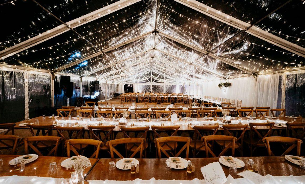 brad-abbey-wedding-reception